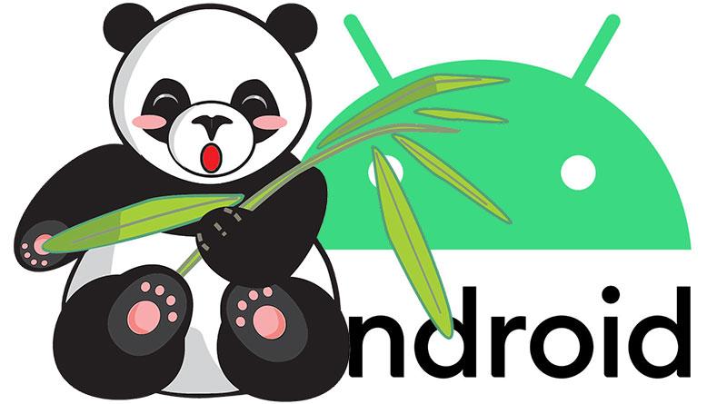 Android 10 má v Číně více modelů telefonů Xiaomi a Redmi než v Evropě